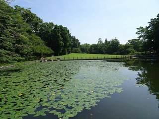 1s-飯田公園の池05760.jpg