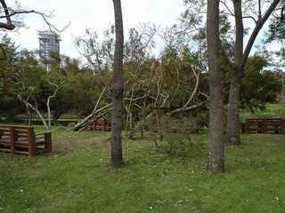 9s-台風被害6280.jpg