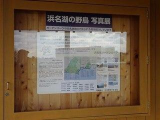 s-10_浜名湖の野鳥写真展06538.jpg
