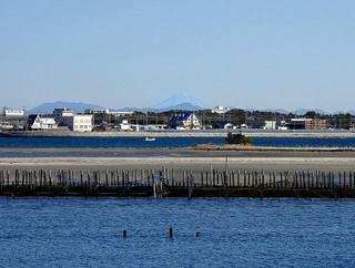 s-4_富士山を臨む7713.jpg