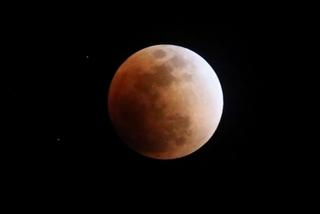 s-7tr_赤い月皆既月食2Q5A4756.jpg