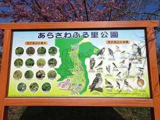 s-8_あらさわふる里公園08468.jpg
