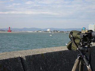 s-8_舞阪漁港00904.jpg
